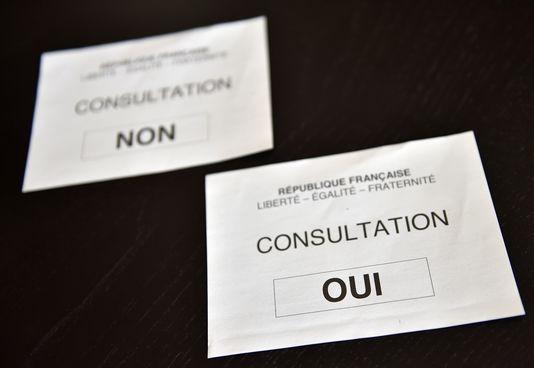 Les électeurs de Loire-Atlantique votaient, dimanche 26 juin, en répondant par oui ou par non à la question « Etes-vous favorable au projet de transfert de l'aéroport de Nantes-Atlantique sur la commune de Notre-Dame-des-Landes ? »