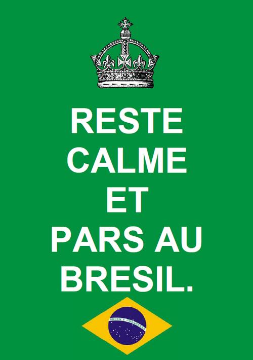 Reste calme et pars au Brésil, coupe, monde, 2014