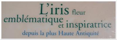 Les IRIS du Jardin de Bagatelle. Paris