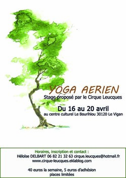 stage yoga aérien