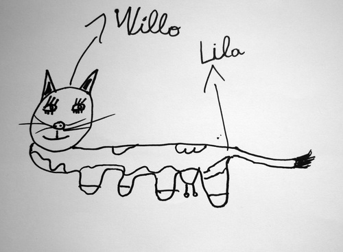 Willo-Lila, Le Chat-Vache
