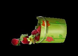 Fruits,fraises