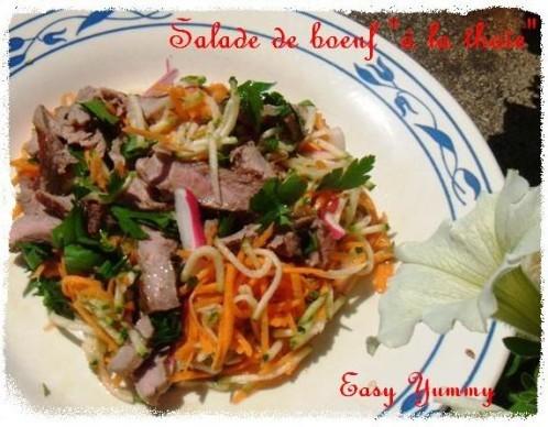 salade-de-boeuf-thaie-copie-1.JPG