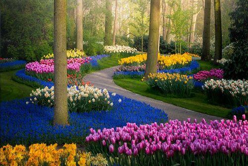 Le plus beau parc floral désert