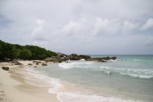 fin juin plage 054