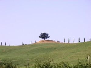 Etape15-Sienne(IT)-Bolsena(IT)