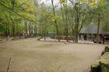 Zoo Osnabruck d50 2012 218