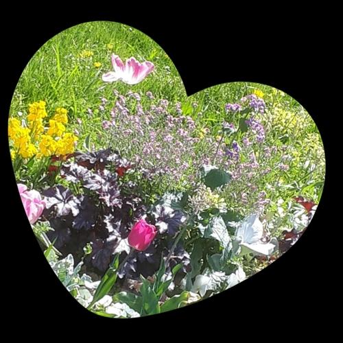 Printemps fleuri cœurs