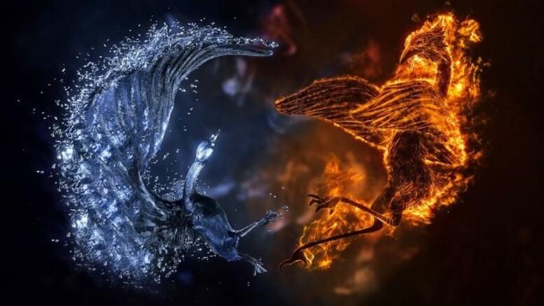 L'Existence de l'Ombre, Savoir la Reconnaître et la Transmuter