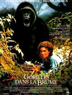 GORILLES DANS LA BRUME BOX OFFICE FRANCE 1989