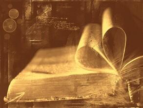 Lire est le seul moyen de vivre plusieurs vies