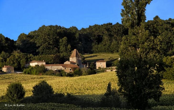 Vue générale - Saint-Avit