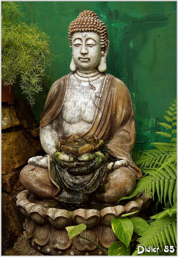 Bouddha (1)