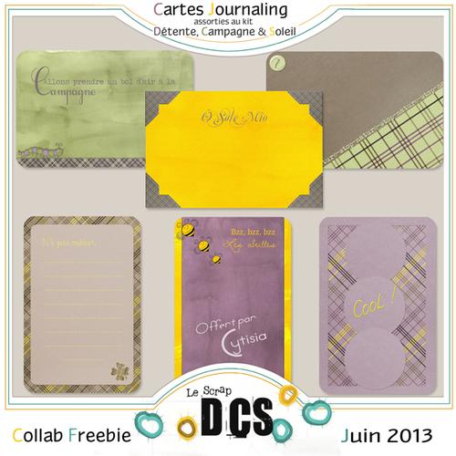 DCS et ses Cartes Journaling