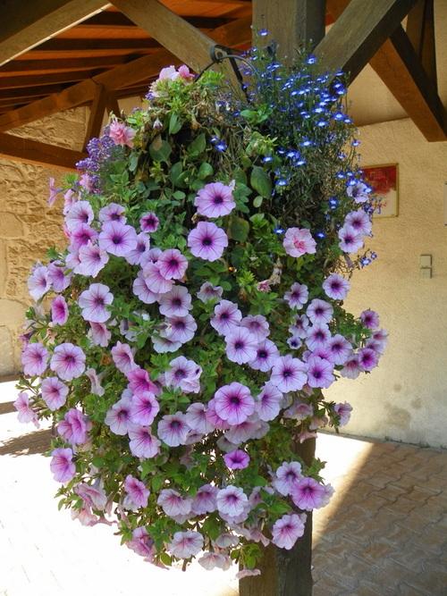 Petit patrimoine fleuri à Nances
