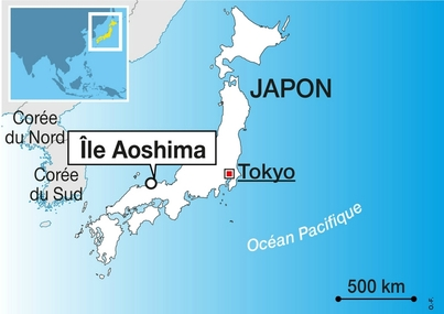 Twitter sauve les chats d'Aoshima