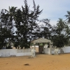 202 Bénin Sur la route des pêches