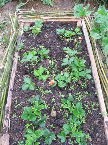 Le-jardin-de-Nini-deco-3022.JPG