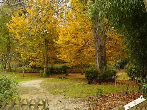 Derniers jours d' automne