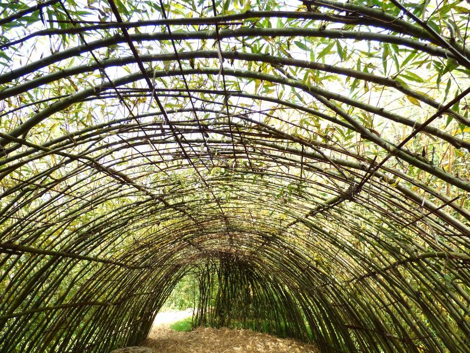 Jardin des Vertueux (2)