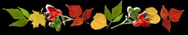 **Bel automne**Anim