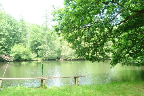 bonne soirée à vous, notre étang