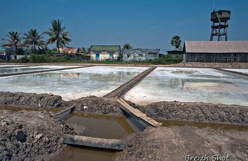 Kampot : marais-salants