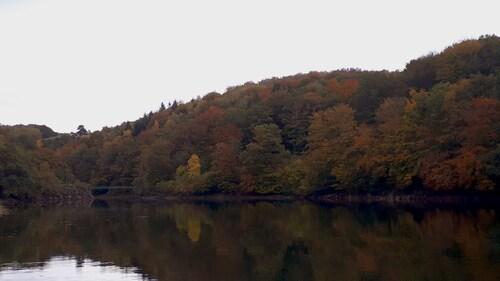 Pareloup en automne