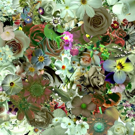 Collages multitubes fleurs du net 3