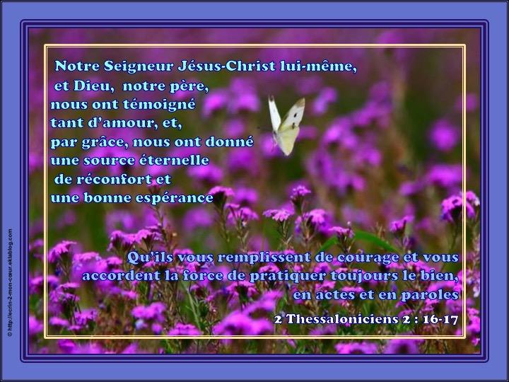Une source éternelle de réconfort et une bonne espérance - 2 Thessaloniciens 2 : 16-17