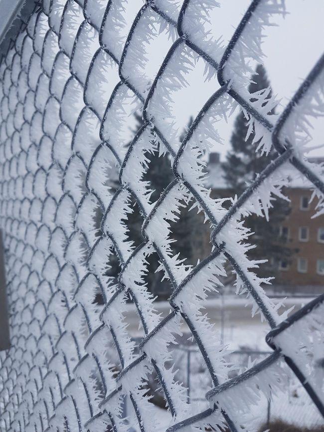 27 photos glacées de l'hiver qui vont vous faire réaliser que vous n'êtes vraiment pas prêts pour le froid