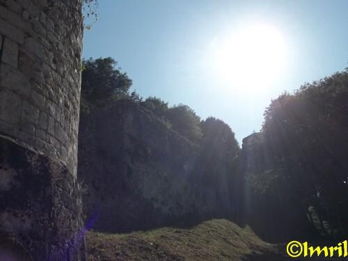 Photographies d'une petite balade à Provins