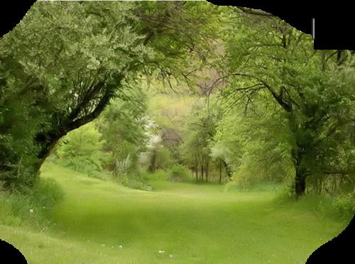 Tubes paysage