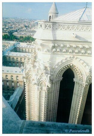 Notre_Dame___les_toits2