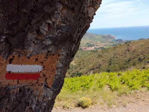La Tour Madeloc Bagnuls/Mer (pyrénéés orientales)