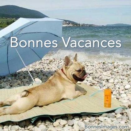 """Résultat de recherche d'images pour """"enfin les vacances humour animaux"""""""