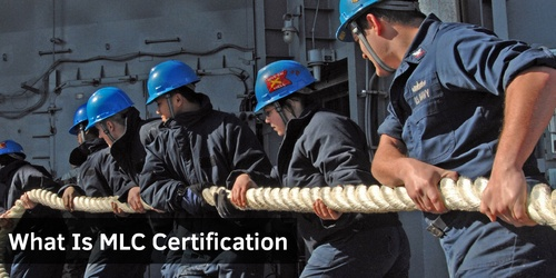 What Is MLC Certification