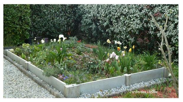 Quelques vues du jardin.