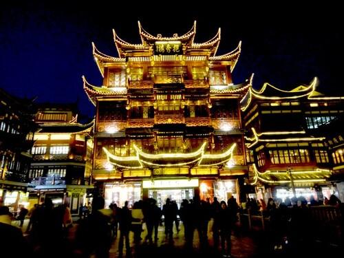 Jour 6: Shangai la nuit et les colombophiles