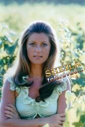 Vacances d'été 1974 : Tu es mon soleil...
