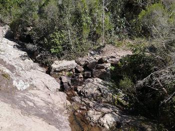 Traversée d'un ruisseau