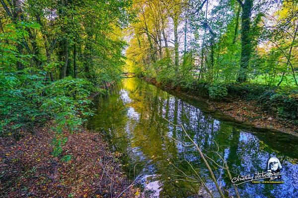 La Seine au Petit Versailles en automne, de très belles photos de Christian Labeaune...