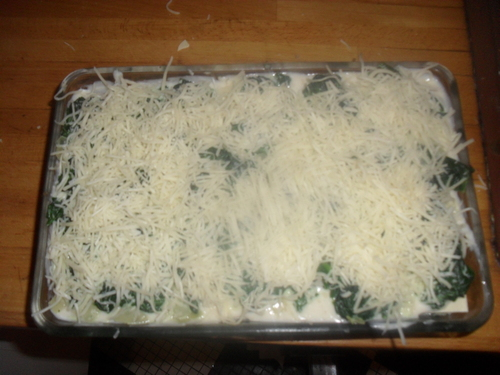 bon, ce soir on repart sur des légumes...Lasagnes aux épinards!!