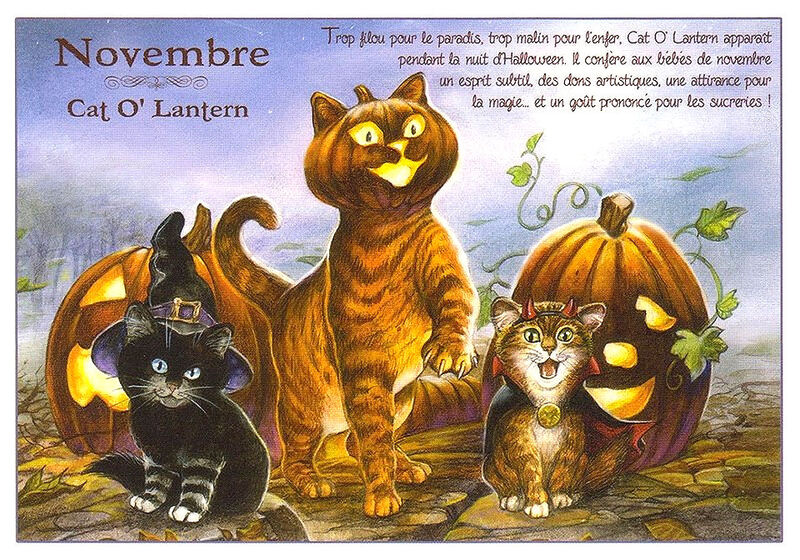 Cartes chats enchantes