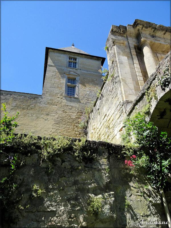 Vues des douves sèches du château de Vayres