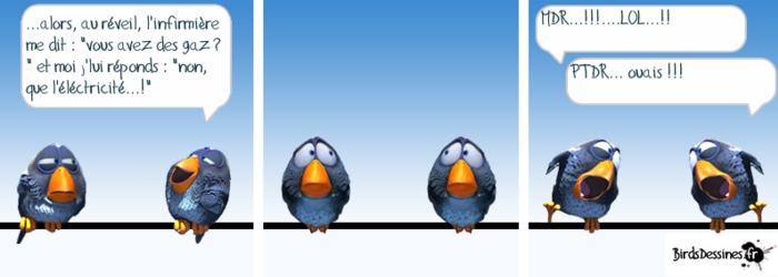 Exposition de patch.... et les birds... 28)