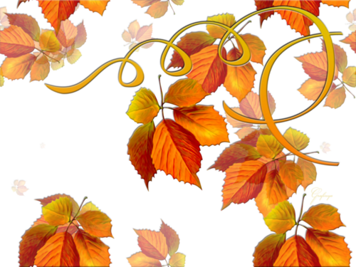 Fonds automne !  2