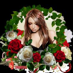 Les perles des roses !