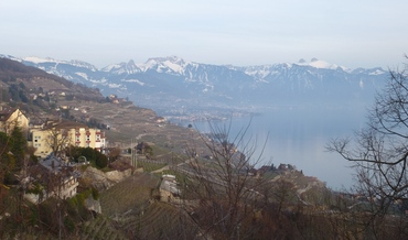 Vers Vevey et Montreux - Vignobles des Lavaux - Rochers de Naye - Dent de Jaman,...