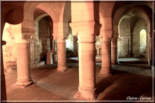 876 - En Vendée, dans la Vallée Verte avec Didier !